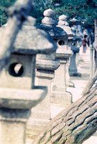 Fotos auf und rund um Miyajima (4)