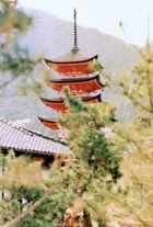 Fotos auf und rund um Miyajima (5)