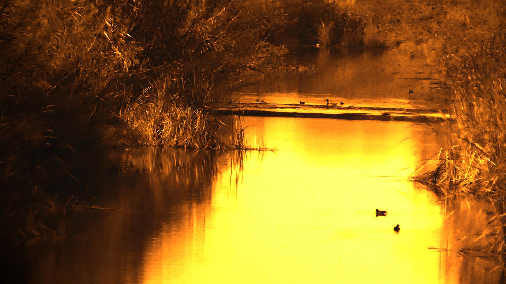 Fotos de naturaleza en HD :)