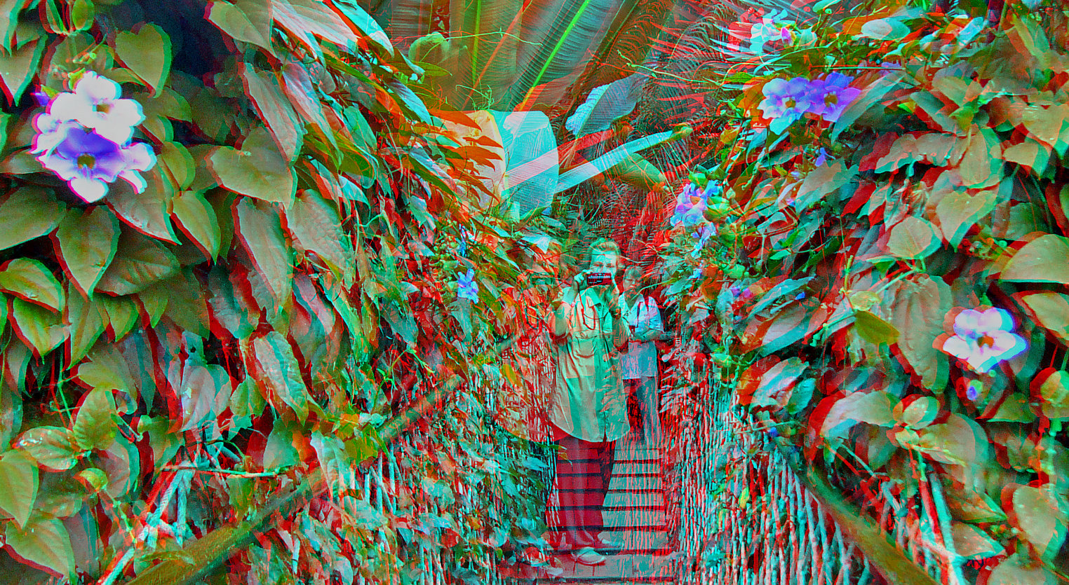 Fotosafari in 3D (01)