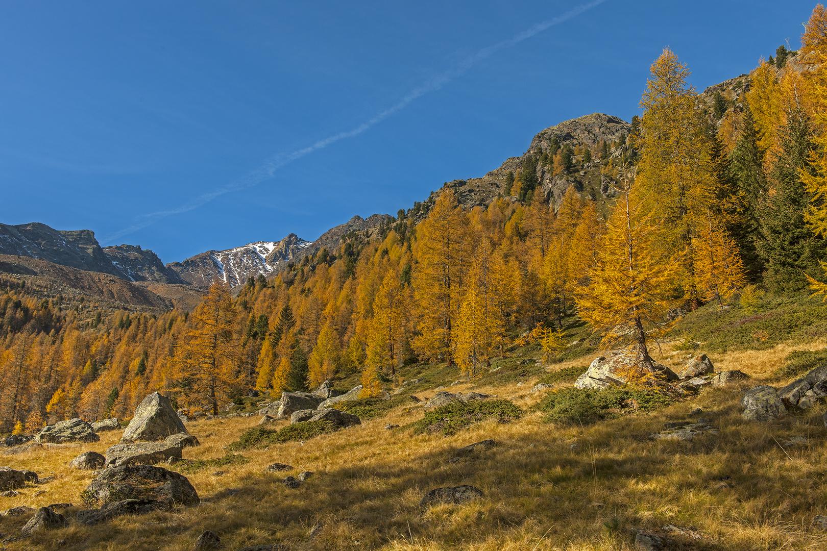 Fotostreifzüge durch Südtirol