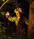 Fox Fairy in the wood