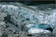 Fox Gletscher - Neusseeland
