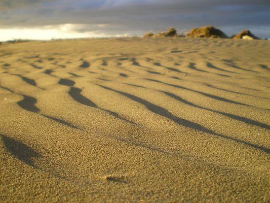 Foxton Beach Neuseeland