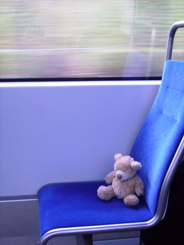 Fränkie sitzt in der Bahn