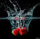 Fragaria splish splash