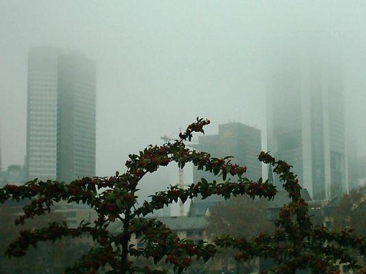 Frankfurt am Main im Nebel