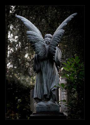 Frankfurt Hauptfriedhof - Teil 1