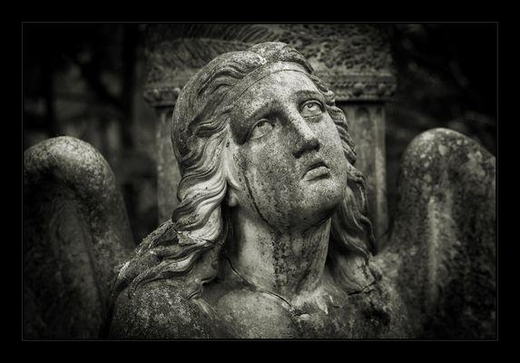 Frankfurt Hauptfriedhof - Teil 2