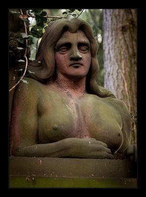 Frankfurt Hauptfriedhof - Teil 5