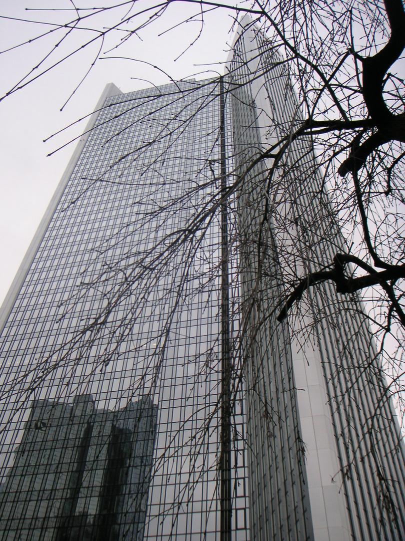 Frankfurt hinter Ästen