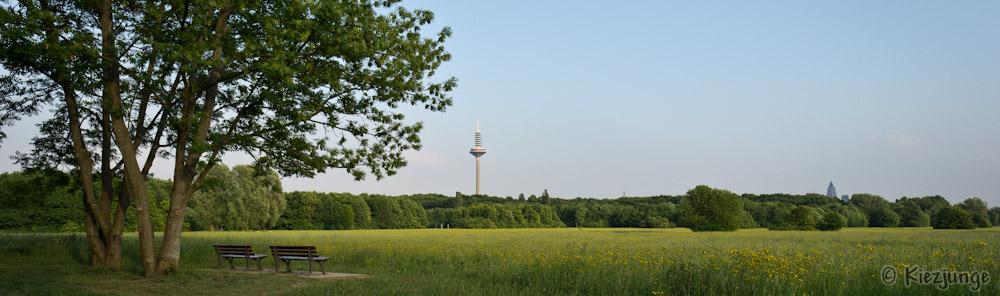 Frankfurt, Niddapark