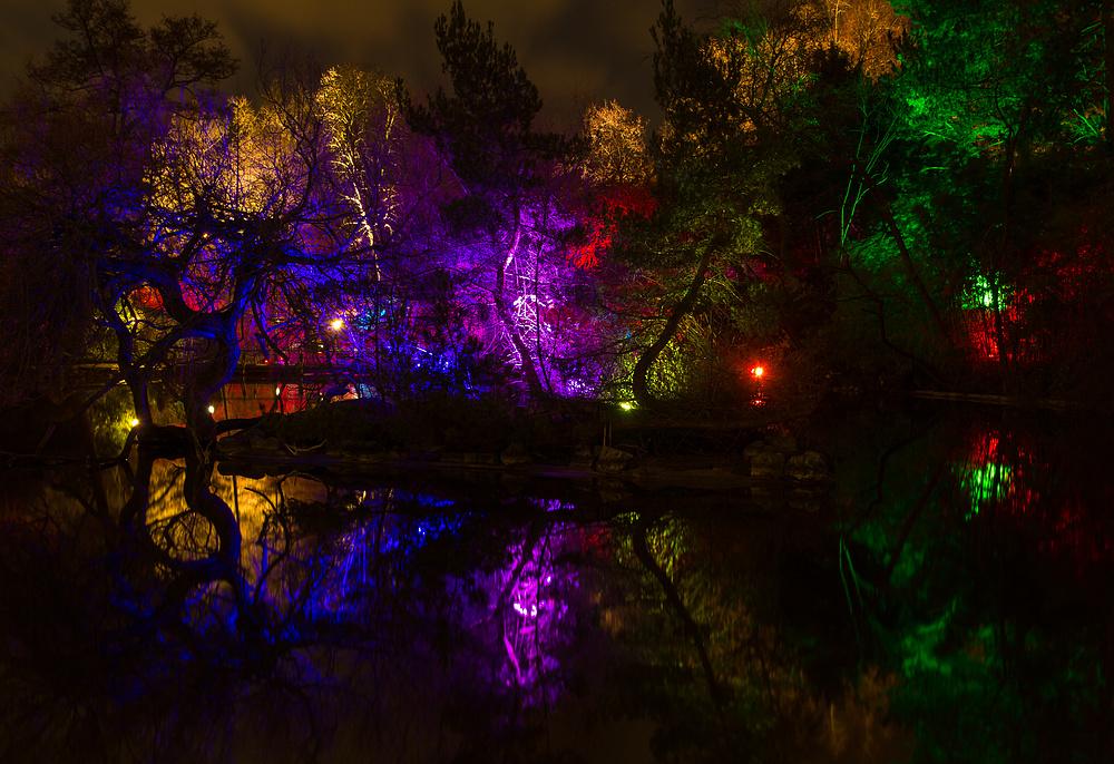 Frankfurt-Palmengarten Ausstellung Winterlichter 3