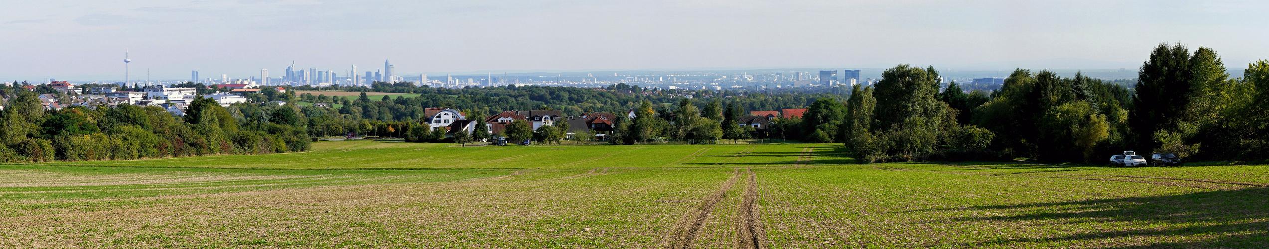 Frankfurter Skyline von Oberhöchstadt (Kronberg) aus gesehen
