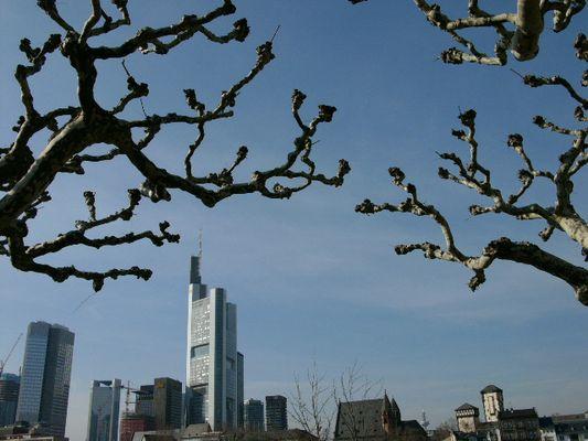 Frankfurt's Skyline