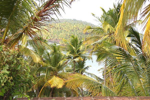 franz.. Guyana-DEVIL`S ISLAND