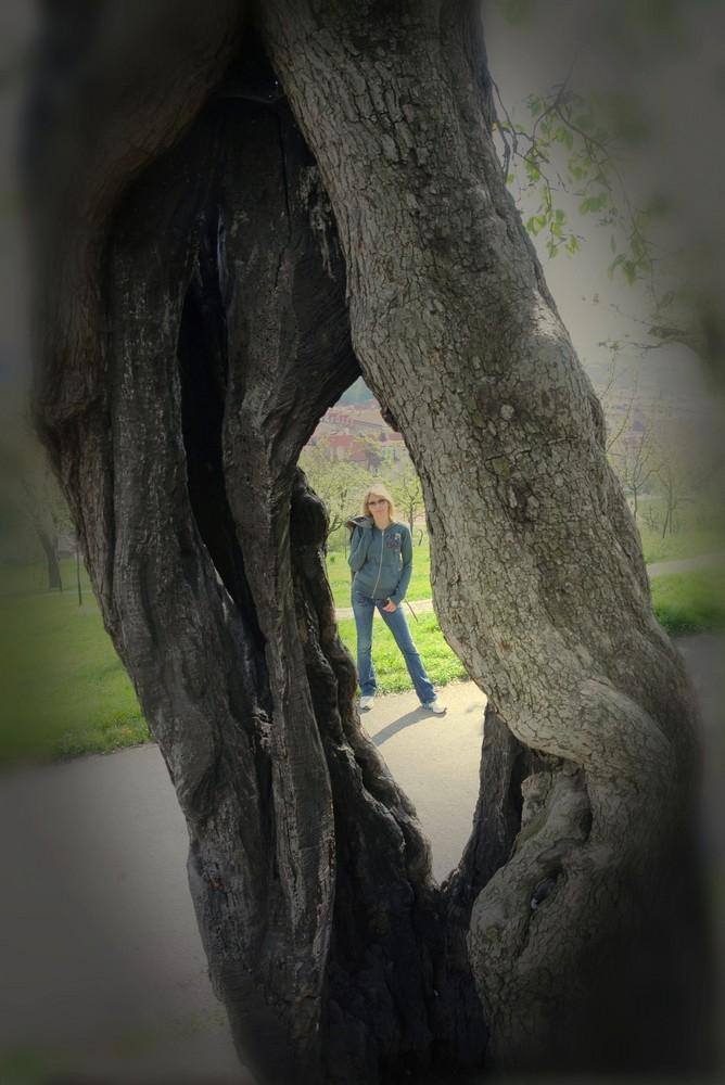 Frau durch den Baum