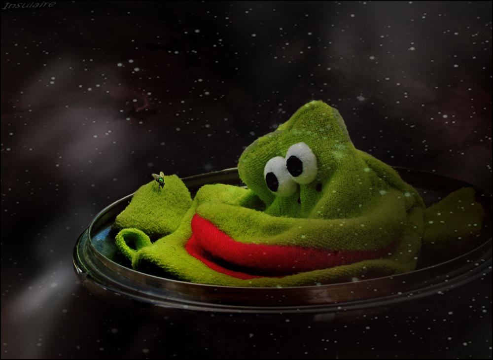 Frau Fliege und der Frosch vom Mars