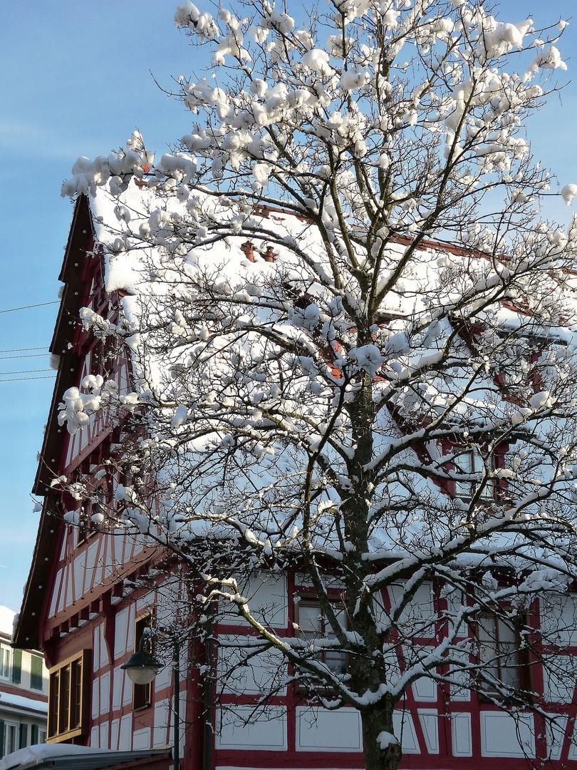 Frau Holle wohnt in Jungingen