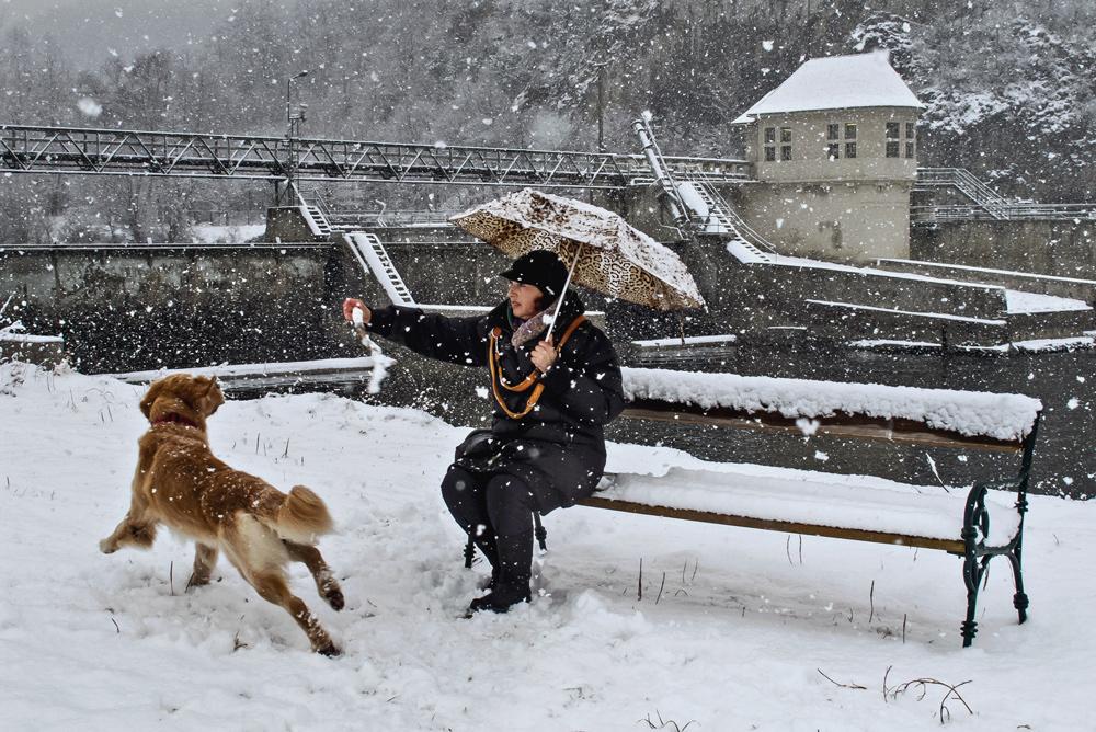 Frauchen mit Hund bei starkem Schneefall!