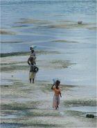 Frauen auf Zanzibar