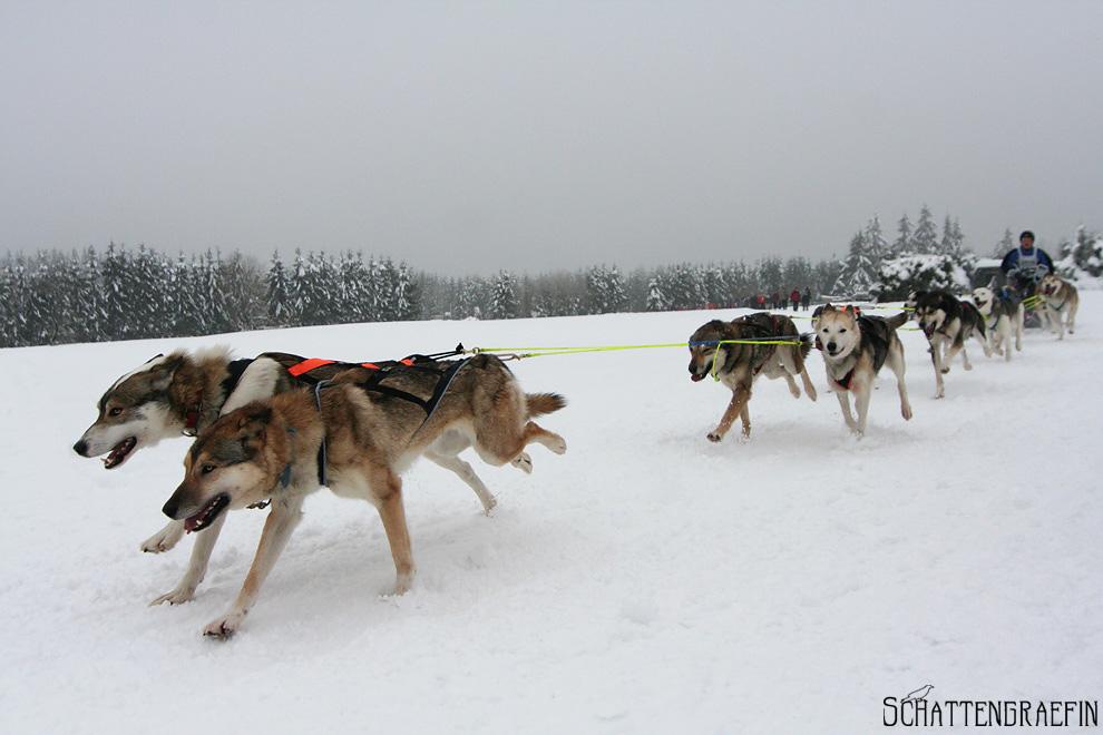 Frauenwald im Winter