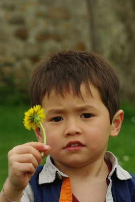 Fredaro, ptit  franco-hispano-sino-khmer