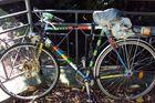 Freiburger Fahrradleiche (die zweite)