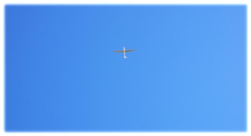 freier Flug... wir dürfen....