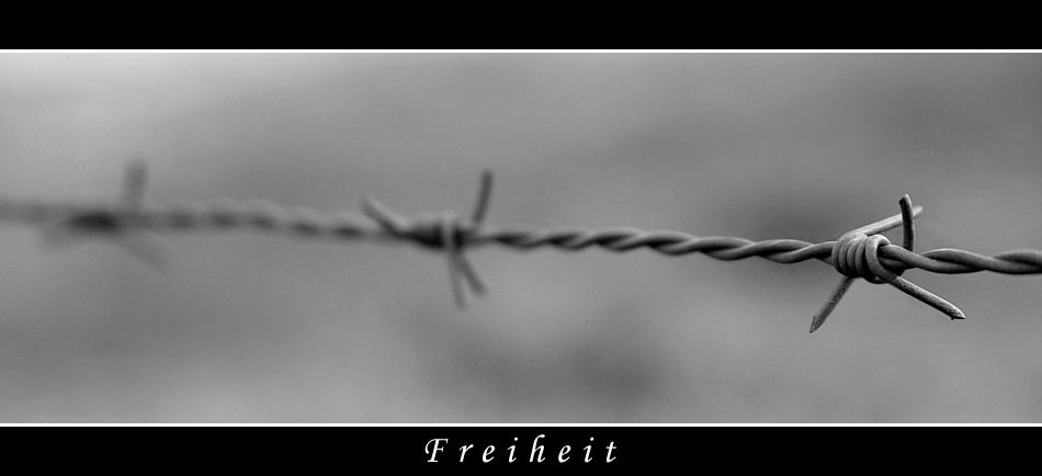--+-- Freiheit --+--