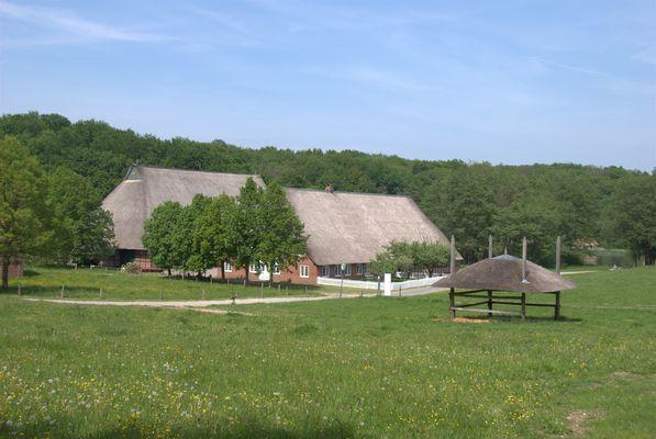 Freilichtmuseum im Mai.