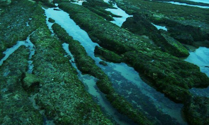 Freiliegende Unterwasserlandschaft