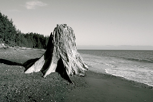 French Beach SW