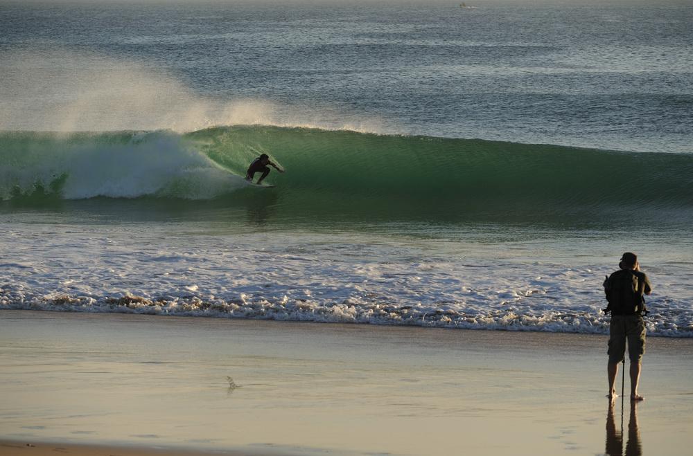 fresh Swell
