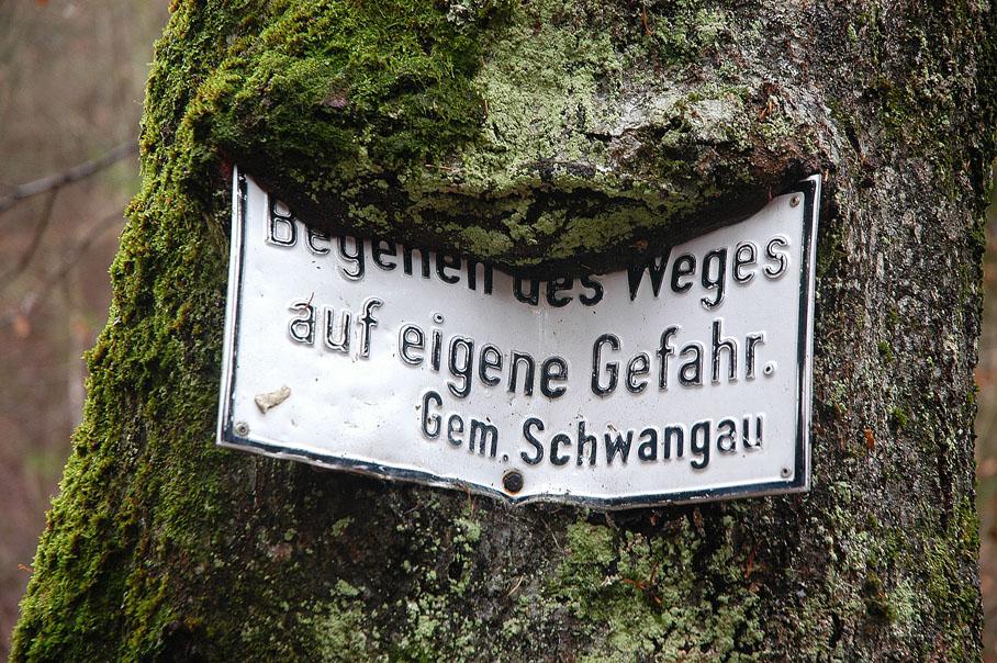 fressende Bäume