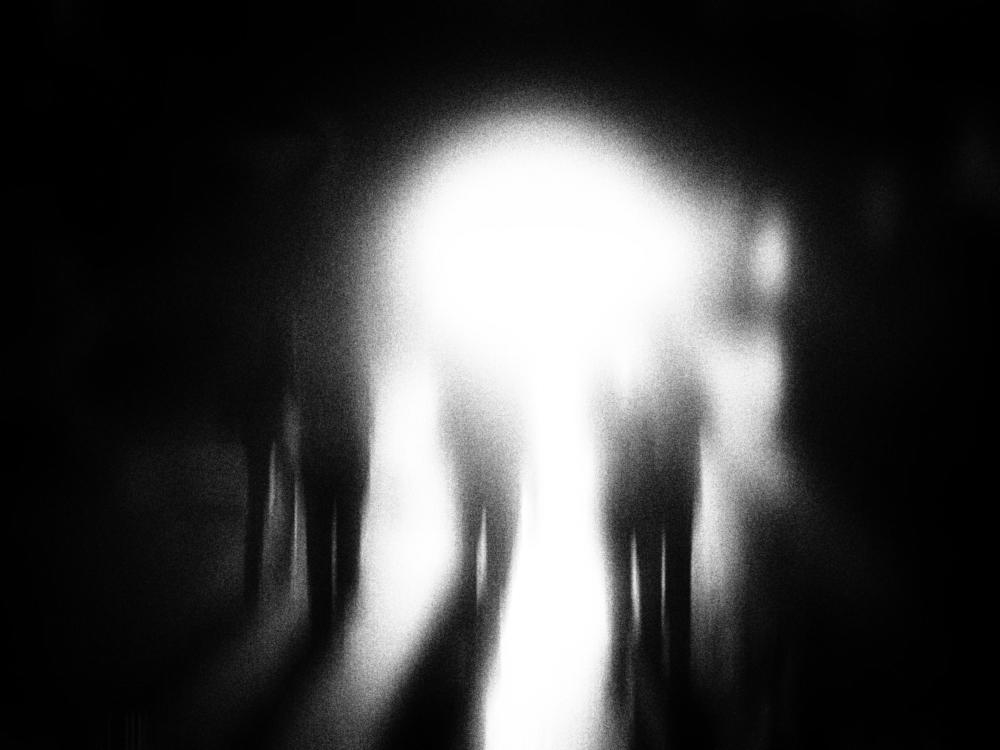 Freunde der Nacht