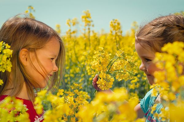 Freundinnen im Rapsfeld (Kinder-Portrait)