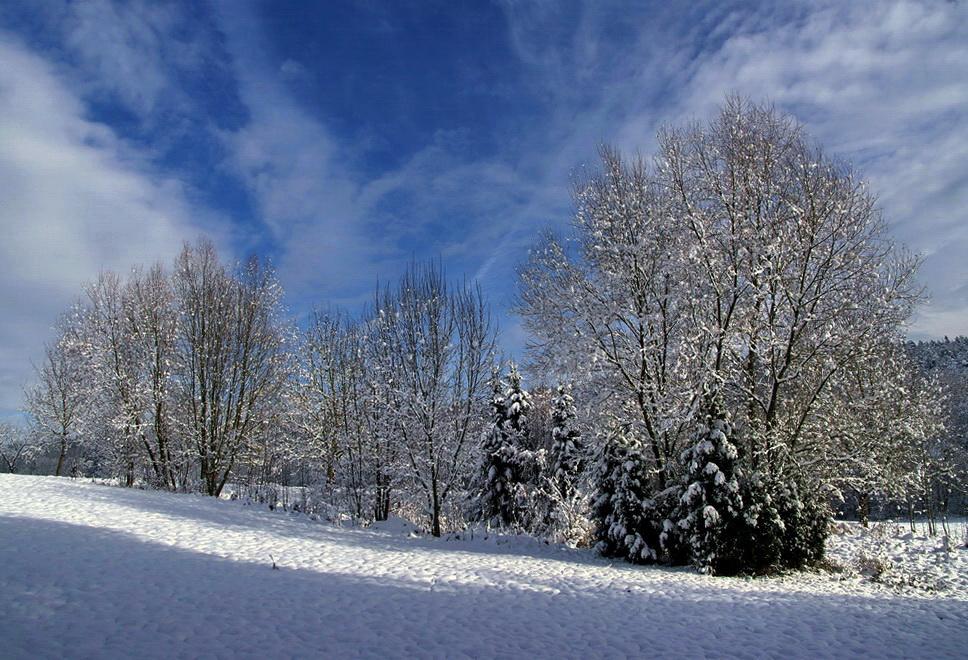 Freundlicher Wintermorgen
