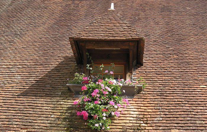 freundliches Dachfenster