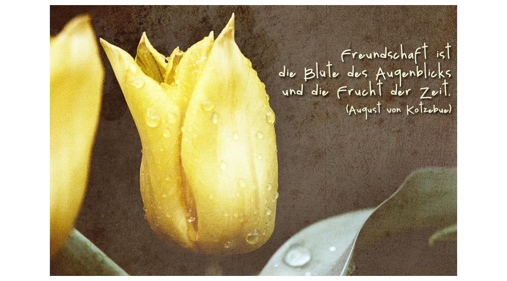 Freundschaft ... Foto & Bild | karten und kalender ...