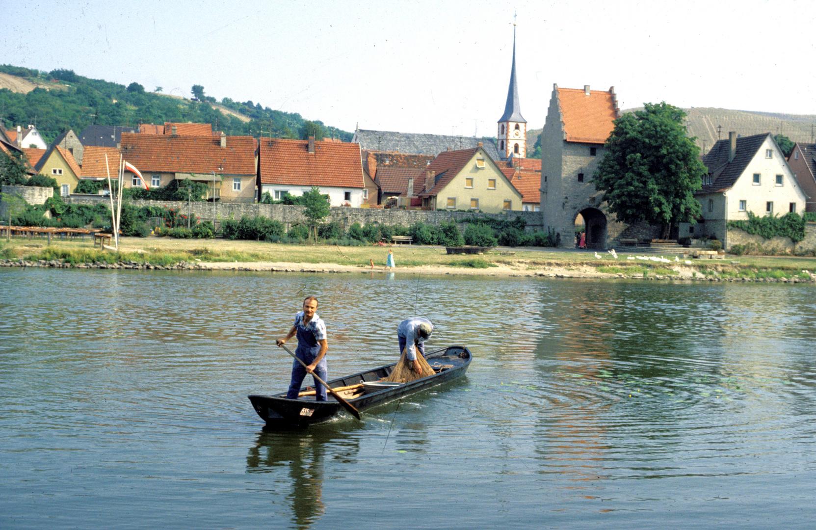 Frickenhausen am Main - Fischer bei der Arbeit