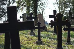 Friedhof 4