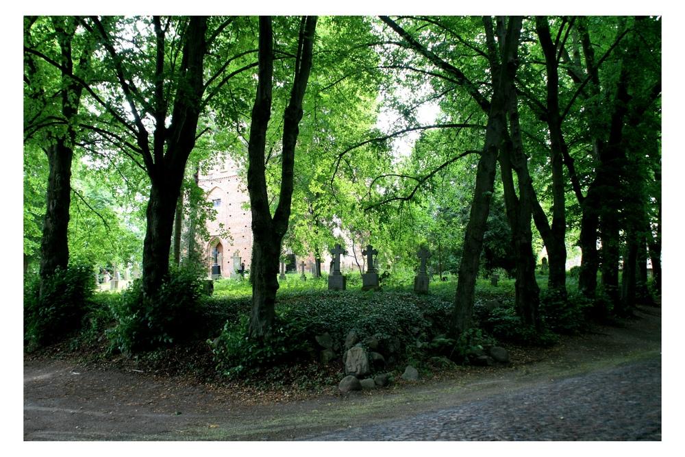 Friedhof auf Rügen