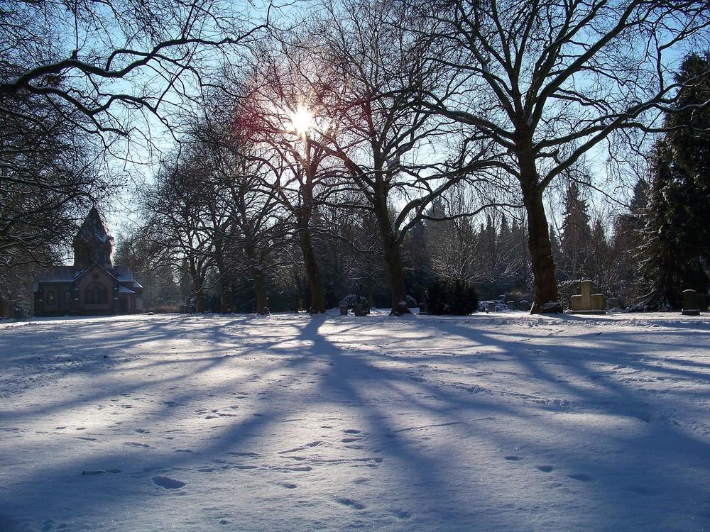 Friedhof Göttingen Entlich Schnee