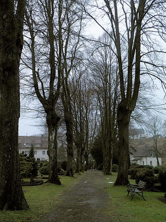 Friedhof, heute schneefrei