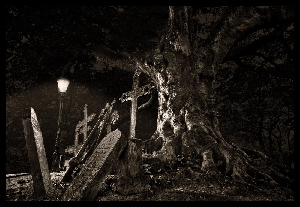Friedhof in Dornum