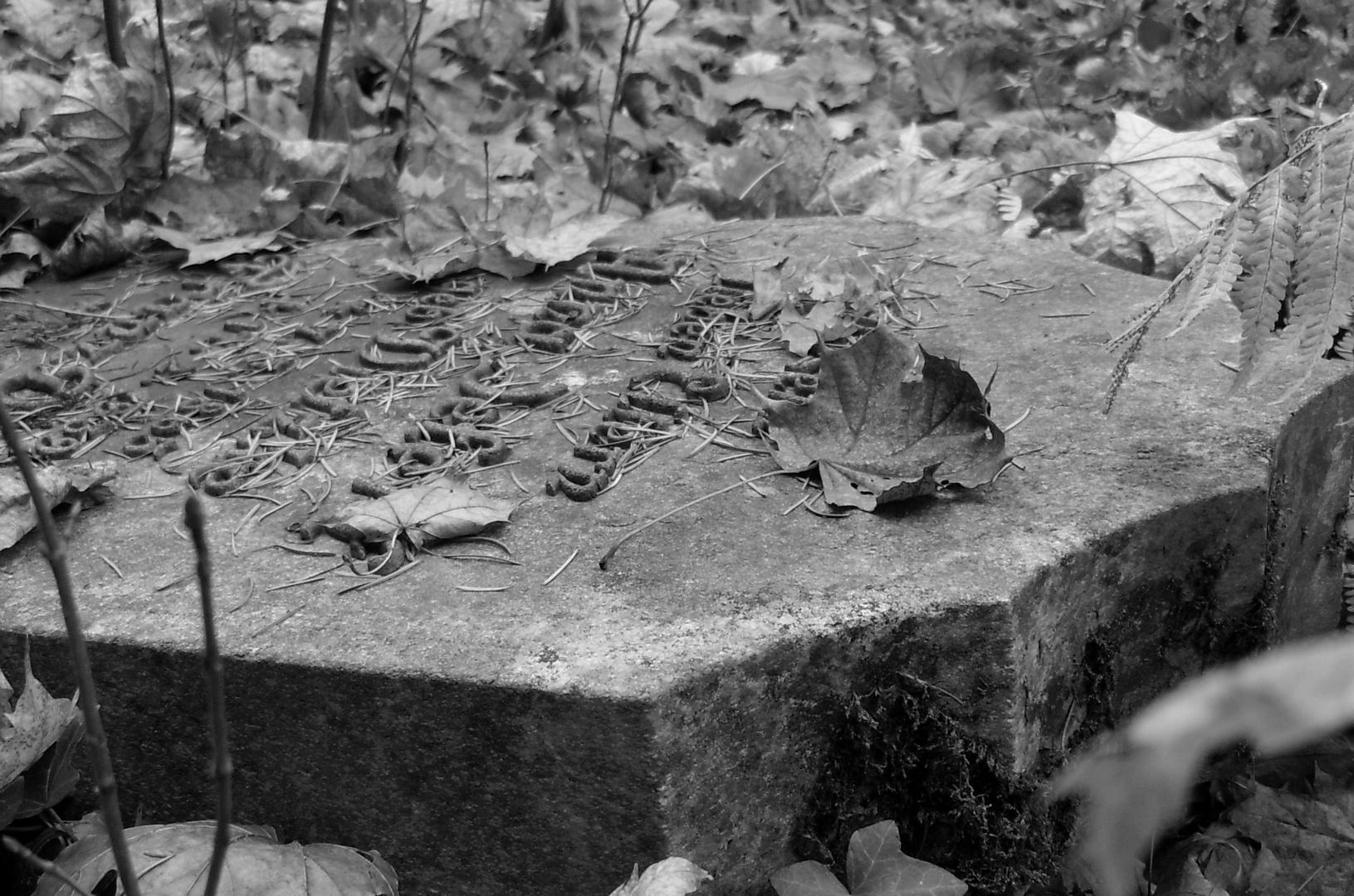 Friedhof in Forst 2