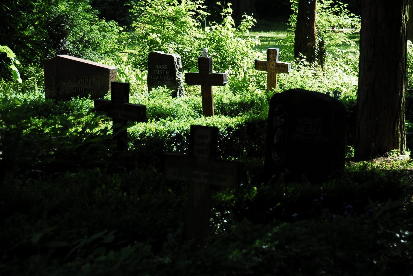Friedhof Mainz-Mombach