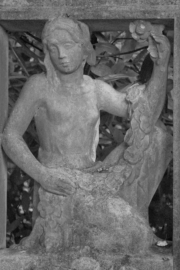 Friedhof Ohlsdorf III