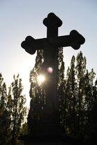 Friedhof Speyer 2